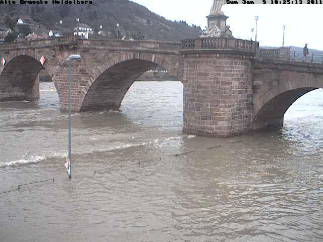 Heidelberg Hochwasser