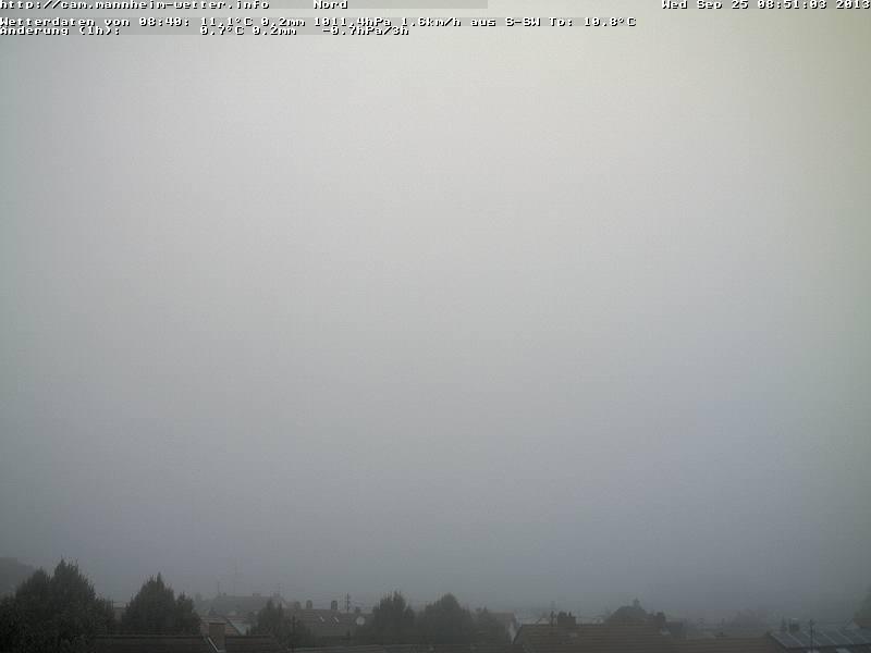 Nebel über Mannheim